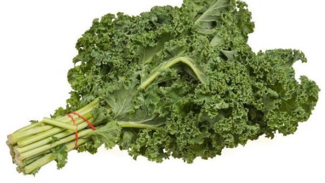 Beneficios kale